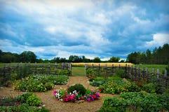 Kwiatu Jarzynowy ogród obrazy royalty free