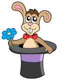 kwiatu kapeluszu królik Obrazy Stock