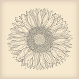 kwiatu karciany rocznik Zdjęcia Stock