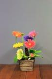 Kwiatu klingeryt Obrazy Stock