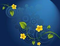 kwiatu kolor żółty Zdjęcie Royalty Free