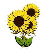 kwiatu kolor żółty trzy Ilustracja Wektor