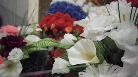 kwiatu kolorowy wianek zbiory wideo