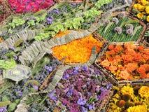 kwiatu kolorowy wzór Fotografia Royalty Free