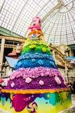 Kwiatu koloru drzewny okwitnięcie w Lotte światu przygodzie fotografia royalty free