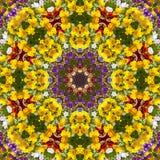 Kwiatu koloru wzoru fiołka kalejdoskop ilustracji