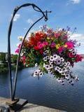 Kwiatu kosz nad rzeką obraz royalty free