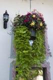 Kwiatu kosz starym domem Zdjęcia Royalty Free