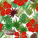 kwiatu liść wzór Obraz Royalty Free