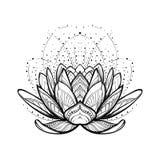 kwiatu lotos W zawiły sposób stylizowany liniowy rysunek odizolowywający na białym tle ilustracja wektor