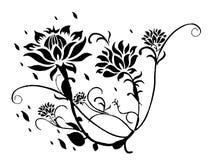 kwiatu lotosu wzór Zdjęcia Stock