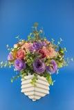 kwiatu model Zdjęcia Royalty Free