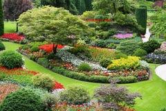 kwiatu ogród obraz royalty free