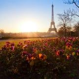 Kwiatu ogród blisko wieży eifla Zdjęcie Stock