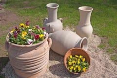 kwiatu ogród kształtował teren Fotografia Royalty Free