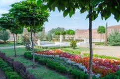 Kwiatu ogród w parku Obraz Stock