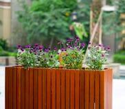 kwiatu ogródu czerwień obraz royalty free