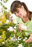 kwiatu ogrodnictwa różanecznika kobieta Obrazy Royalty Free