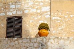 Kwiatu okno z drewnianymi żaluzjami na tle żółta stara ściana i garnek fotografia stock