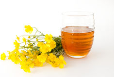 Kwiatu okwitnięcia miód w szkle Zdjęcie Royalty Free