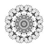 Kwiatu owocowy monochromatyczny botaniczny wektorowy mandala dojrzały granatowiec odizolowywa na białym tle Dekoracyjny wschodni  Fotografia Stock