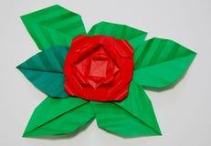 kwiatu papier Fotografia Royalty Free