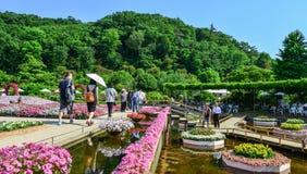 Kwiatu park w Ashikaga, Japonia obraz royalty free