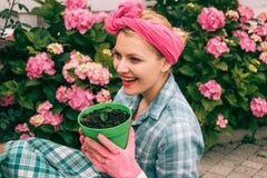 Kwiatu podlewanie i opieka ziemie i użyźniacze hortensja Wiosna i lato Szklarniani kwiaty szczęśliwa kobiety ogrodniczka fotografia royalty free