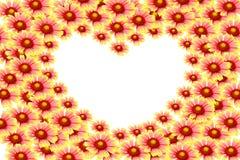 Kwiatu pojęcie Fotografia Royalty Free