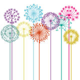 Kwiatu projekt Zdjęcie Stock