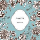 Kwiatu projekta odznaka i astery, heartseases wokoło na błękitnym tle Ręka rysująca wektorowa ilustracja ilustracja wektor