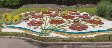 Kwiatu przedstawienia krajobrazu park w Kijów Fotografia Stock