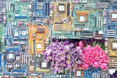 Kwiatu przedstawienie fotografia stock