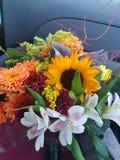 kwiatu przygotowania Zdjęcia Royalty Free