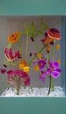 kwiatu przygotowania Obraz Royalty Free