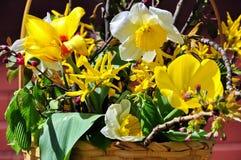 kwiatu przygotowania Fotografia Stock