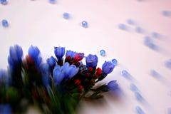 kwiatu przygotowania Zdjęcie Stock