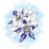 Kwiatu przygotowania w malowniczym nakreślenie stylu royalty ilustracja