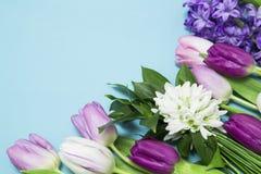 kwiatu przygotowania obrazy stock