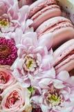Kwiatu pudełko Fotografia Stock