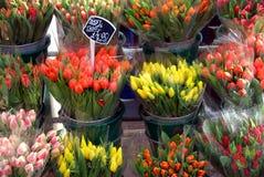 kwiatu rynek Obraz Royalty Free