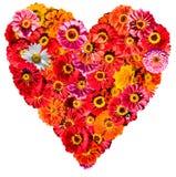 kwiatu serce s fotografia royalty free