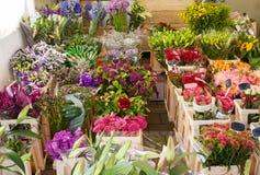 Kwiatu sklep, widzieć w Amsterdam, holandie Fotografia Stock
