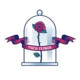 Kwiatu sklepu wektoru logo Obrazy Royalty Free
