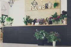 Kwiatu sklepu wnętrze, mały biznes kwiecistego projekta studio zdjęcia stock