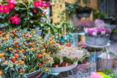 Kwiatu stojak w centrum Copengahen, Dani Fotografia Stock