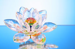 kwiatu szkła lotos Zdjęcie Royalty Free