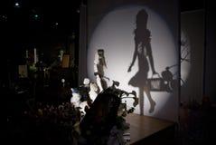 kwiatu sztuka cienia przedstawienie Zdjęcie Royalty Free
