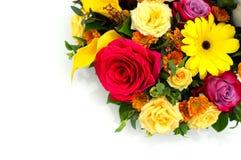 Kwiatu tło świezi kwiaty obraz royalty free