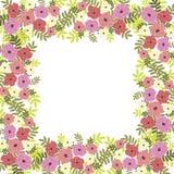 Kwiatu tło Fotografia Royalty Free
